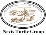 Nevis Sea Turtle Group